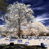 H. Warren Smith Memorial Cemetery (Infrared)