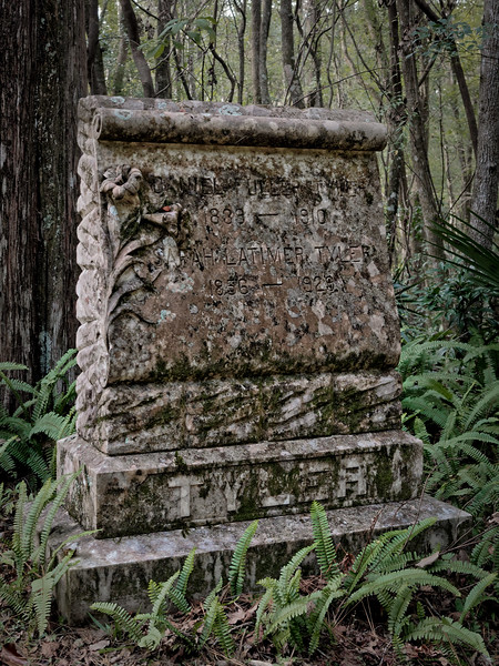 Sarah Latimer Tyler 1856-1929
