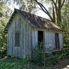 Farm shed at Walter Jones Historic Park