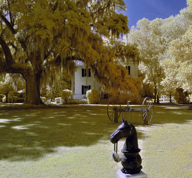 Hitching Post in Front of the Frampton Plantation House