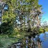 Santa Fe Lake, Melrose, Florida