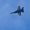 Navy Blue Angel