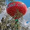 Plant City Strawberry Water Tower