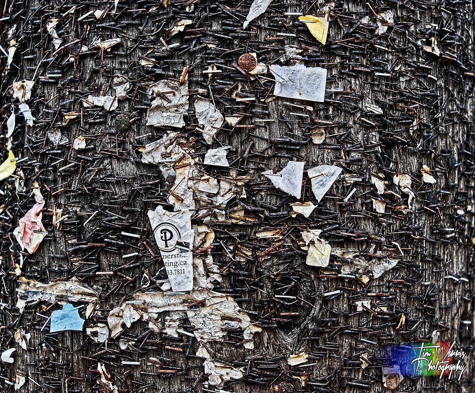 This post is where they keep all the staples in Toronto....