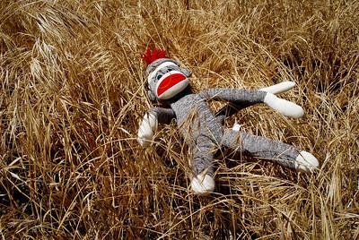 Childhood Abandoned