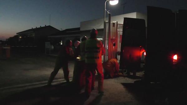 Vídeo para medios, acción Doñana (1)