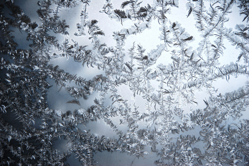 Frost on a window.