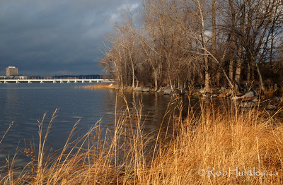 Ottawa River in the late fall. Champlain Bridge is in the distance. It is December 1 and feeling quite cool so this could be considered winter except that we have no snow yet