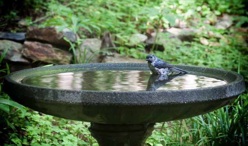 2015-06-20-bath