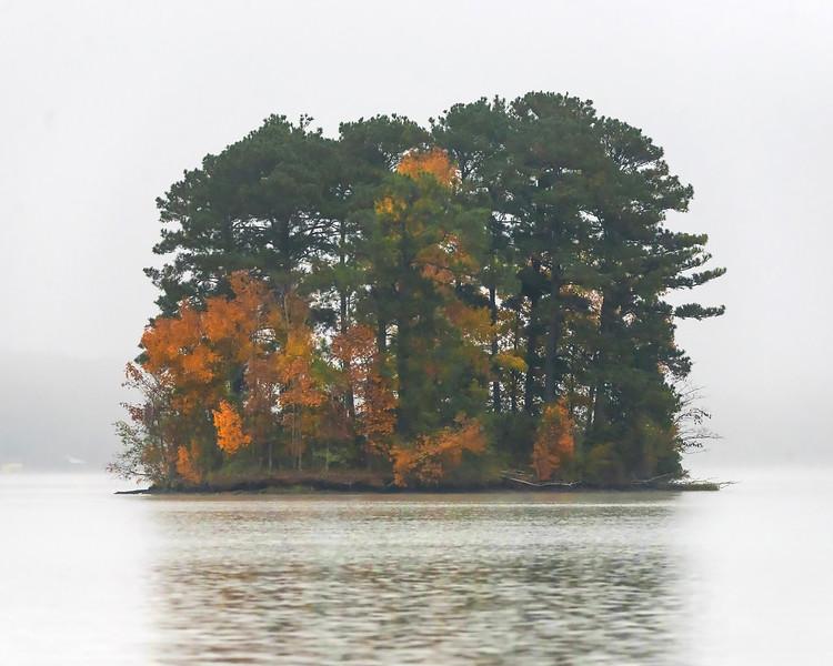 Autumn Island Fog