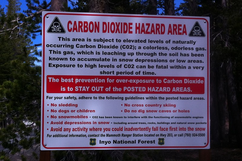 I sign just outside Mammoth Lakes, California.  Crazy!