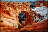 Bryce Canyon National Park, Utah <br /> March, 2008