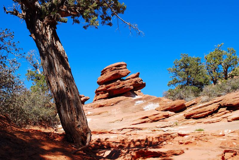 Zion National Park, Ut.
