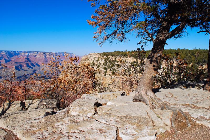 Grand Canyon, East Rim.
