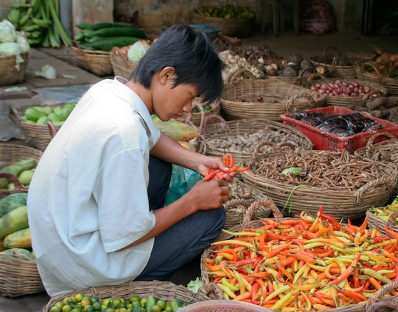 Boy in a Vietnam Village on Market Day