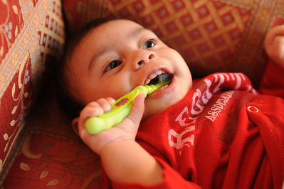 Zo loves his toothbrush (and the bubble gum toothpaste)