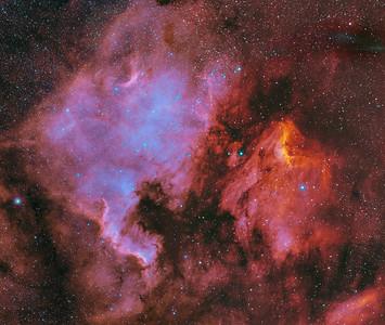North America and Pelican Nebula Mosaic