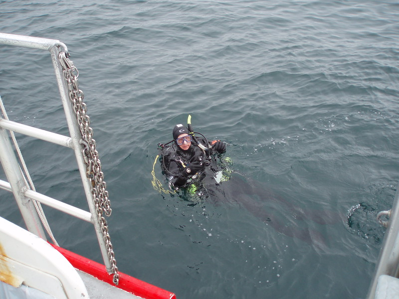 PADI Wreck Diver Certification class with Dive 'n Surf