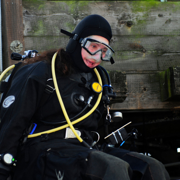2012-02-19<br /> Morro Bay North T-pier with Kevin Lee<br /> Dive #'s 458-459