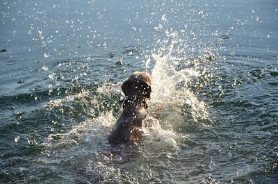 2012 07 24-26 Eglegemvijver