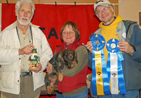 Mielikki finished her Field Championship on November 4, 2012 with three first places and one Absolute win.