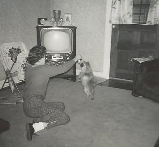 Feb-1960