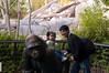 2008-01-12 - San Diego Zoo - Kylie and Gorilla Statue - _DSC1492