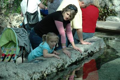 Sydney enjoying the Chattanooga Aquarium