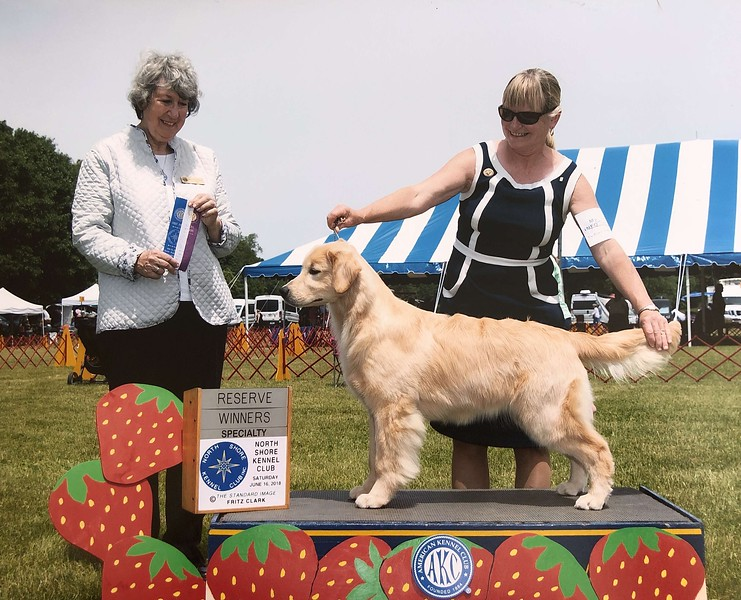 Dani winning RWB at North Shore Kennel Club<br /> Age is 6 months and 5 days