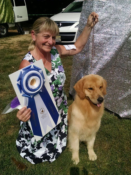 Jelly winning her SECOND Major!  Only 1 point to go to her AKC Championship!