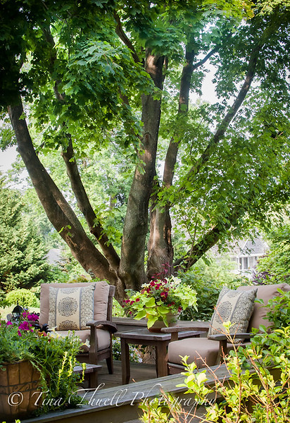 2015 summer deck...can you imagine anything this spectacular