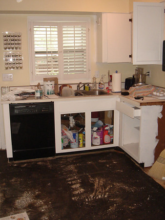 Kitchen Renovation - August 2007