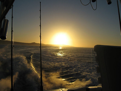 sun is up - time to go fishing!