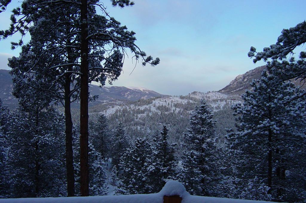 Snow Storm Marh 2003 041