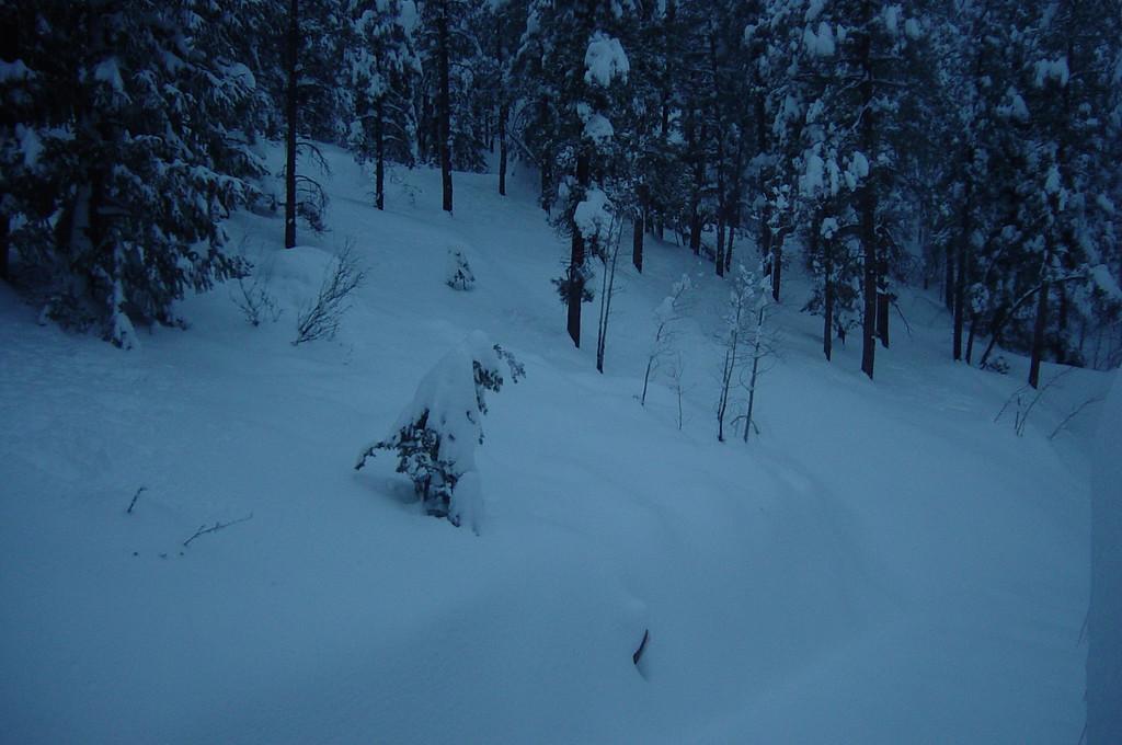 Snow Storm Marh 2003 145
