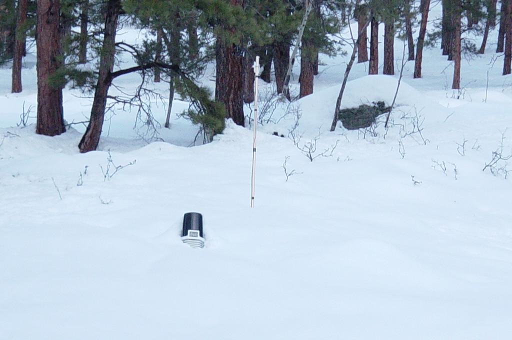 Snow Storm Marh 2003 155