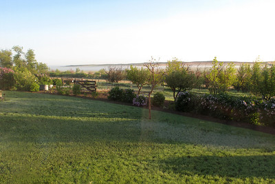 June 10, 2009:  Happy Birthday, Brian! Frosty morning; fog lifting from the creek north of the house