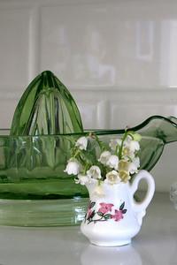 Lilacs, Fawn 011 vert