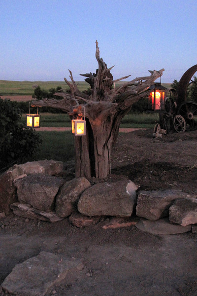 """July 6, 2011<br /> This tree stump was a hold-over from the south side of the house prior to the kitchen addition. In the new makeover, we """"planted"""" it up-side-down, using the roots for arms on which to hold lanterns."""