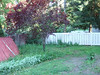 Here you can see the neighbor's fence that we are going to match, except it will be 6' tall instead of 5'.