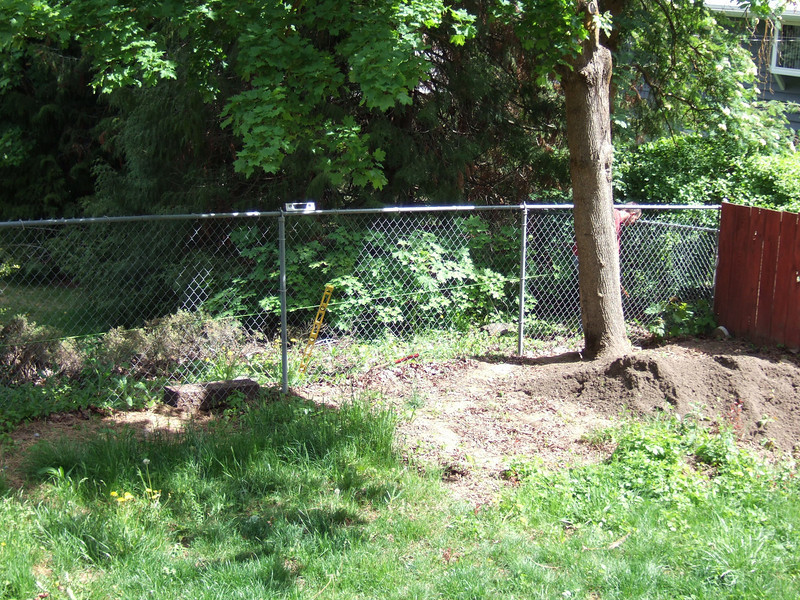 Existing chain link fence, starting install of the retaining wall.
