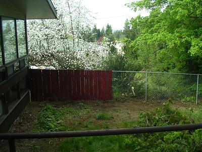 Landscaping - Backyard - Demo '06