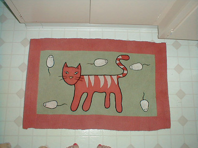 Kitty rug!  There are two - one in front of the vanity, and one in front of the shower.