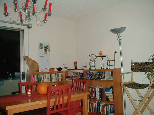 Dining Room With Cat