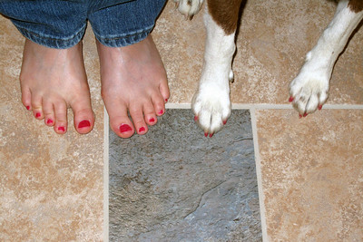 Cowgirl singer Juni Fisher came for a visit in August 2009. While here, she painted her toenails. Juni thought good dog Jessie should have pretty toenails too.