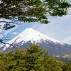 Osorno Volcano, Perez Rosales National Park, Los Lagos, Chile