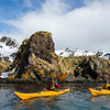 One Ocean Expeditions passengers sea kayaking in South Georgia while on an adventure cruise.