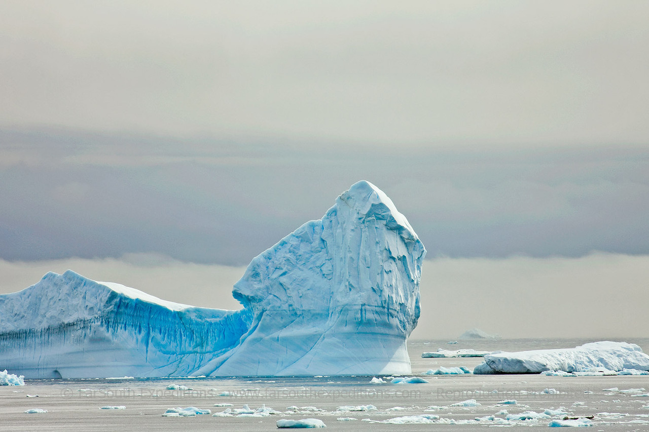 "Icebergs at Weddell Sea, east of the Antarctic Peninsula © Claudio F. Vidal, FS Expeditions -  <a href=""http://www.fsexpeditions.com"">http://www.fsexpeditions.com</a>"