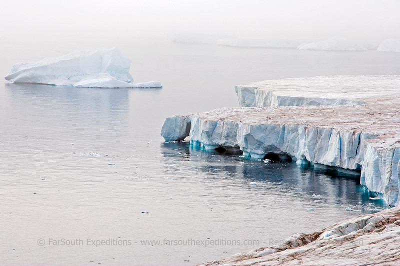 "Ice-shelf near Brown Bluff, Antarctic Peninsula © Claudio F. Vidal, FS Expeditions -  <a href=""http://www.fsexpeditions.com"">http://www.fsexpeditions.com</a>"