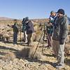 Birding the Altiplano grassy steppe, Arica, Chile